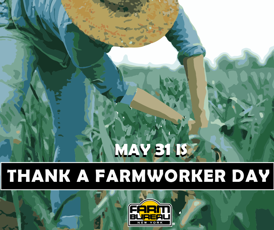 Thank farmworker bb twitter.png